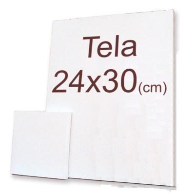 TELA  DE PINTURA C/ PLASTICO 24X30